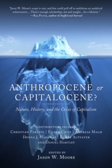 Image for Anthropocene or capitalocene?  : nature, history, and the crisis of capitalism