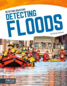 Image for Detecting floods