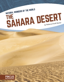 Image for The Sahara desert