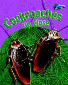 Image for Cockroaches up close