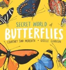Image for Secret world of butterflies