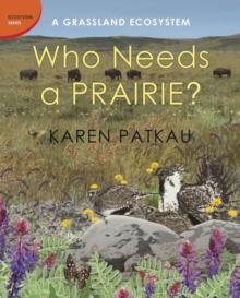Image for Who needs a prairie?  : a grassland ecosystem