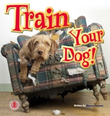 Image for Train Your Dog