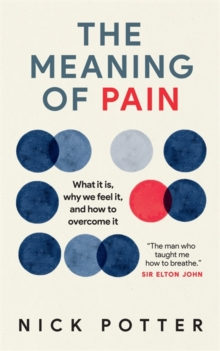 Image for The meaning of pain  : what it is, why we feel it, and how to overcome it
