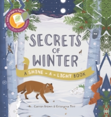 Image for Secrets of winter