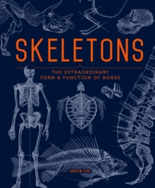 Image for Skeletons  : the extraordinary form and function of bones