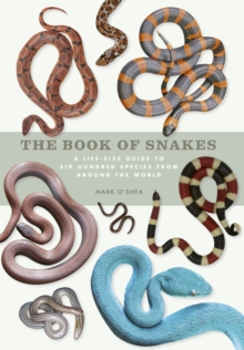 Image for The book of snakes  : a life-size guide to six hundred species from around the world