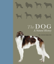 Image for The dog  : a natural history