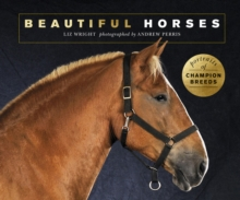 Image for Beautiful horses  : portraits of champion breeds