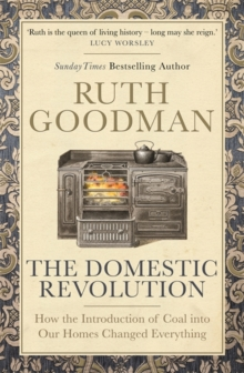 The domestic revolution  : how the introduction of coal into our homes changed everything - Goodman, Ruth