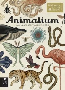 Image for Animalium