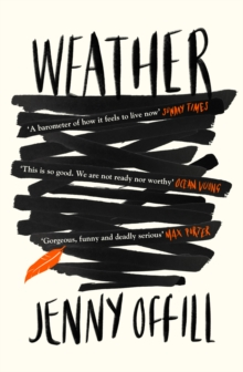 Image for Weather  : a novel