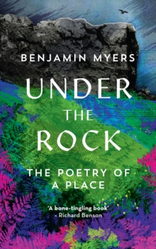 Image for Under the rock  : the poetry of a place