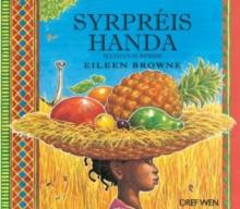 Image for Syrpris handa