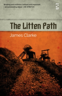 Image for The litten path