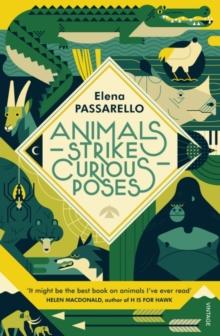 Image for Animals strike curious poses  : essays