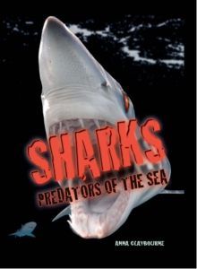 Image for Sharks  : predators of the sea