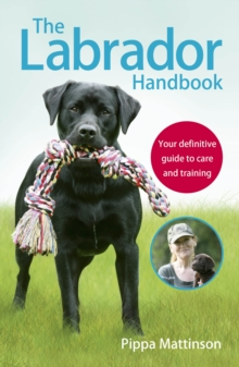 Image for The labrador handbook  : the definitive guide to care and training