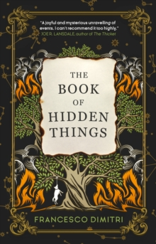 Image for The Book of Hidden Things