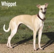 Image for Whippet Calendar 2019