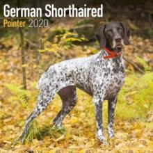 German Shorthaired Pointer Calendar 2020