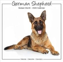 German Shepherd Studio Calendar 2020