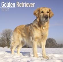 Image for Golden Retriever 2021 Wall Calendar