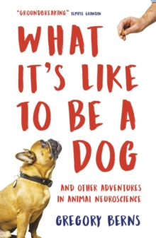Image for What it's like to be a dog  : and other adventures in animal neuroscience