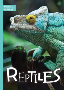 Image for Reptiles