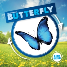 Image for Life cycle of a butterfly