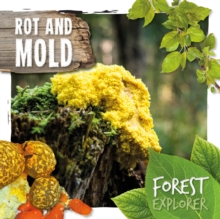 Image for Rot and mould