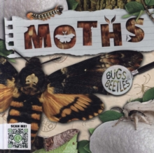 Image for Moths