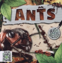 Image for Ants