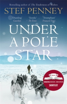 Image for Under a pole star