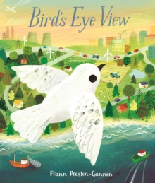 Image for A bird's eye view