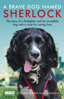 Image for A brave dog named Sherlock