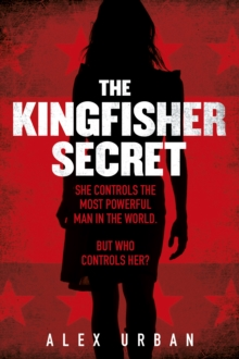 Image for The kingfisher secret