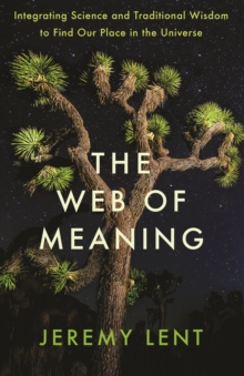 Image for The web of meaning  : integrating science and traditional wisdom to find our place in the universe