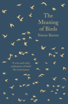 Image for The meaning of birds