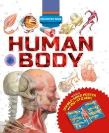 Image for Discovery Pack: Human Body