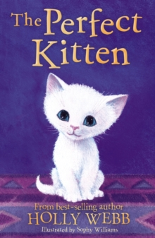 Image for The perfect kitten