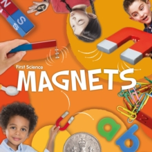 Image for Magnets