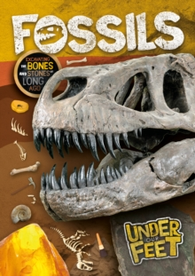 Image for Fossils  : excavating the bones and stones of long ago