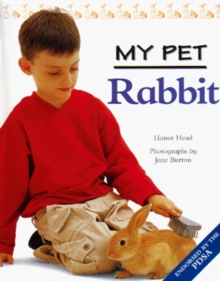 Image for Rabbit