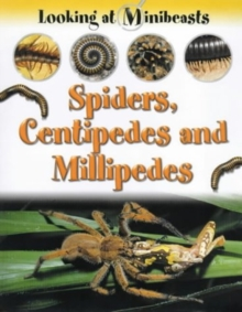 Image for Spiders, centipedes and millipedes