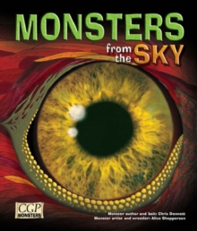Image for KS2 Monsters from the Sky Reading Book