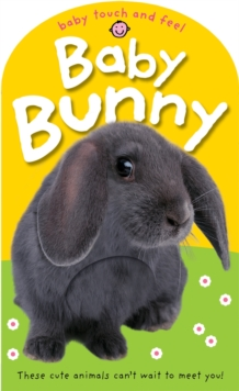 Image for Baby bunny  : these cute creatures can't wait to meet you!