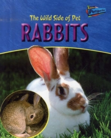Image for The wild side of pet rabbits