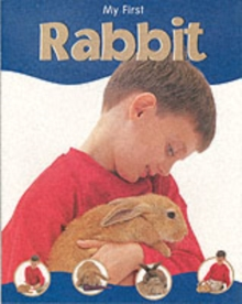 Image for My first rabbit