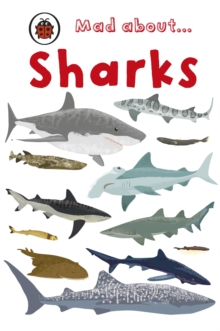 Image for Mad about- sharks